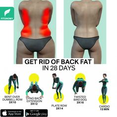 Fitness Workouts, Gym Workout Videos, Gym Workout For Beginners, Fitness Workout For Women, Back Workouts For Women, Easy Workouts, Back Workout Routine, Full Body Gym Workout, Back Fat Workout