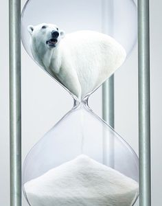 I like this ad because When i look at it i feel like I can hear the polar bear roaring as he melts down to the bottom of the hour glass