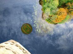 Nad jeziorem w Zełwągach odbijamy się w wodzie