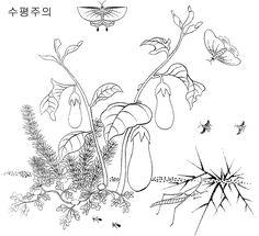 초충도 본그림 - 수박, 가지, 양귀비, 맨드라미 Birth Animal, Art Template, Green Art, Botanical Illustration, Line Drawing, Folk Art, Coloring Pages, Art Drawings, Oriental