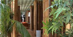 Bambus Design- Elemente Plants, Design, Wall Panelling, Bamboo, Plant, Planets
