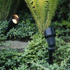 Techmar Plug and Play - Focus Verona LED Garden Spotlight Kit - 4 Lights from Lighting Direct. Delivered direct to your door - Buy online today 12v Garden Lights, Solar Spot Lights Outdoor, Garden Spotlights, Outdoor Lighting, Lighting Ideas, Lighting Design, Garden Lighting Bollards, Solar Powered Spotlight, Plant Lighting