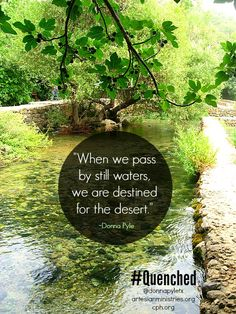 """My new book released on July 10th! """"Quenched: Christ's Living Water for a Thirsty Soul"""" ow.ly/3nbG1Q #Quenched #Psalm23 #river #peace"""