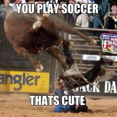 ...I'm just sayin':  How about a 2000 pound leather Bull to play Rodeo?!