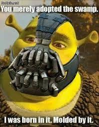 Image result for shrek meme