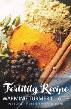 Turmeric latte for supporting fertility wellness for women. Fertility Boosters, Pcos Fertility, Fertility Smoothie, Tea For Fertility, Fertility Doctor, Natural Fertility Info, Natural Healing, Pregnancy Nutrition, Pregnancy Tips