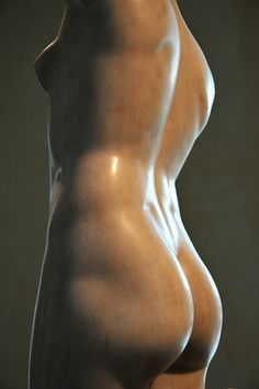 The roman sculpture of the Esquiline Venus. Brilliantly sculpted. The muscle lines are crisp and gorgeous