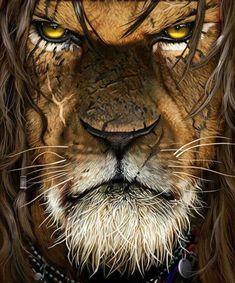 Lion Images, Lion Wallpaper, New Africa, Lion Of Judah, Lion Art, Lion Tattoo, Fantasy Creatures, Furry Art, Beautiful Creatures