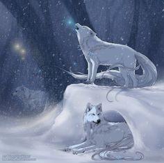 "White wolf art - looks like ""Wolfland"" http://wolfstraeume.blogspot.de/"