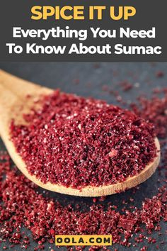 Sumac is one of the most popular spices for many cultures throughout the world, but do you know everything there is to know about this versatile spice? Middle East Food, Middle Eastern Recipes, Homemade Spices, Homemade Seasonings, Zatar Recipes, Sumac Spice, Pesto, Gourmet Recipes, Cooking Recipes
