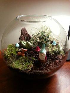 my DIY terrarium