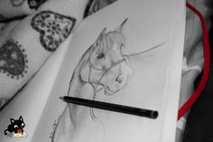 drawing an horse