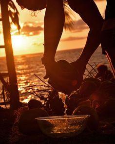 Time for a sunset coco loco 😜 #beautifuldestinations #jungladeljaguar #passionpassport #paradise #travelgram #hostel #travel #welltraveled #photography #beach #beachlife #thisiscostarica #costaricaexperts #adventureculture
