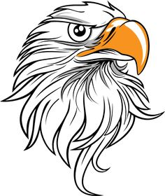 44 images of eagle mascot clipart you can use these free cliparts rh pinterest com free eagle clip art images free beagle clip art