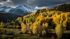 Where Winter Meets Fall by ajphotos50