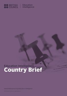 Offering a demographic and economic overview of a given country, the briefs…
