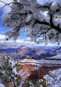 Grand Canyon, Arizona When we visited in the winter, there were 9 inches of snow on the ground and they were expecting more. The entire canyon was filled with fog. You could only see the tops of the canyon walls. Still beautiful. All Nature, Amazing Nature, Nature Pics, Places To Travel, Places To See, Beautiful World, Beautiful Places, Peaceful Places, Amazing Places
