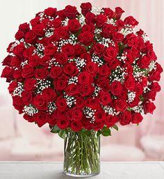 buque com rosas vermelhas                                                                                                                                                                                 Mais