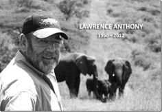 Lawrence Anthony, who devoted his live to rescuing elephants. He was known as the elephant whisperer. When he passed away, elephants travelled over a hundred miles to his home to pay tribute to him, where they stayed for two days. Amazing elephant devotion.