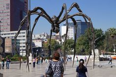 D.F araña