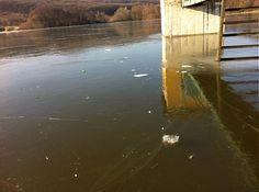 Eko.Tamara / ...ľad na vode alebo voda pod ľadom...