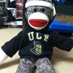 64 Best University of Central Florida (UCF) images ...