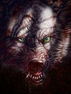 Hear my roar by WolfRoad on deviantART (wild wolf, wolves, art, wolf-tribe) Fantasy Wolf, Dark Fantasy, Fantasy Art, Wolf Hybrid, Werewolf Art, Howl At The Moon, Vampires And Werewolves, Wolf Wallpaper, Wild Wolf