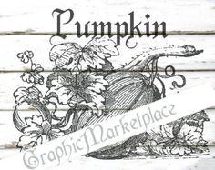 Pumpkin Vegetable Halloween Instant Download Shabby French Transfer Burlap digital graphic printable No. 461