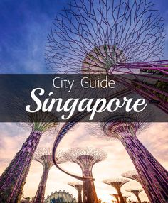 For such a small size Singapore sure knows how to pack a punch! Here's my guide to get your started planning your trip. From what to see, where to stay, and most importantly, where to eat!! ;) | #YourSingapore #Singapore #Asia #TravelTip