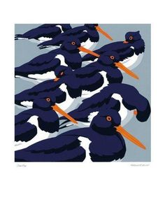 'Sea-Pies (Oyster Catchers)' by Robert Gillmor (rga7)