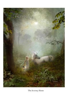 Fairy gift   'The Journey Home'  cropped version ... Hand signed print By Charlotte Bird