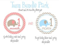 Monthly Milestone Stickers Twin monthly baby by ClamsAndaHamDog, $17.50