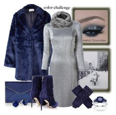 """""""Silver & Blue, the Ultimate Winter Combo  (Contest Entry)"""" by mary-gereis ❤ liked on Polyvore featuring Won Hundred, Gianluca Capannolo, Rebecca Minkoff, Paul Andrew, Topshop, Dents, Palm Beach Jewelry and Bling Jewelry"""