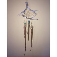 Antler Dreamcatcher  Shed Antler Art  Western Wall by craftydoe