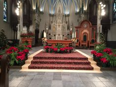 Cathedral of St. Andrew Christmas Alter