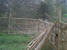 Barrière en bois / campagne / prairie