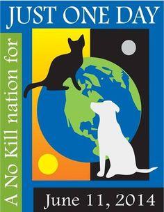 No Kill Animal Sheltering