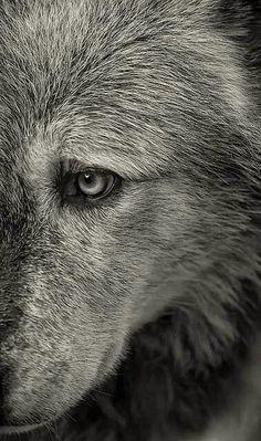 The eye of the beholder!(: