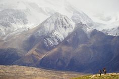 Tibetan Nomad Herdsman surrounded by the Kyirong Mountain Landscape. by reurinkjan, via Flickr