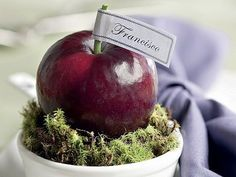 marcador de lugar com frutas, fruits, tablescape, table setting, fruits placement
