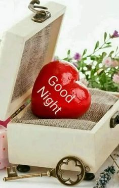 Good Morning Friends Images, Good Night Friends, Good Morning Funny, Good Night Wishes, Good Morning Good Night, Beautiful Good Night Images, Good Night Images Hd, Good Night Gif, Good Night Quotes