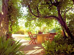 Location de charme pour 4/5 personnes dans le Luberon http://www.luberonweb.com/luberon/locations-de-vacances/sous-le-figuier-2240/ Location de charme pour 4 à 5 personnes dans le Lubéron à Murs, petit village de charme proche de Gordes. Venez découvrir le charme du Luberon, en toutes saisons, dans cette authentique et confortable maison en pierres ! http://www.luberonweb.com/luberon/Murs