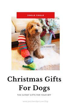 100 Goldendoodles Everything Doodle Ideas In 2021 Goldendoodle Most Popular Dog Breeds Dogs