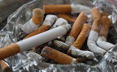 Giulianova multe per chi inquina