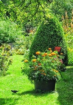 #-neuer Gartentraum-Sommer