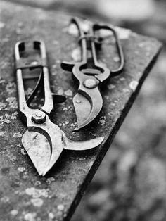 3 Young Hacks: Garden Tool Sheds Spaces garden tool organizer life.Garden Tool Crafts Garage garden tool shed tips. Garden Tool Storage, Garden Tools, Garden Sheds, Display Ideas Nursery, Vintage Gardening, Country Living Magazine, English Country Gardens, Hacks, Planting Seeds