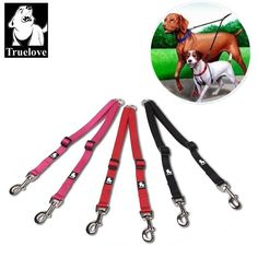 Truelove Nylon Adjustable Double Dog Leash Running No Tangle Dog Walking Lead Leash Trainer Dogs Splitter Lead Dropshipping Hot Two Dogs, Small Dogs, Buy A Dog, Animals Of The World, Dog Leash, Dog Walking, Tangled, Trainers, Running