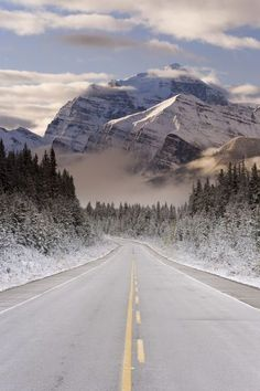 The Icefields Parkway between Banff & Jasper in Banff-Jasper National Parks, Rocky Mountains, Canada