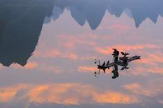 As Above, So Below by Marsel van Oosten - Photo 193994063 / 500px