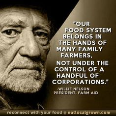 Great Quotes, Me Quotes, Inspirational Quotes, Food Quotes, Wisdom Quotes, Bernie Sanders, Usa Tumblr, Willie Nelson, Greed